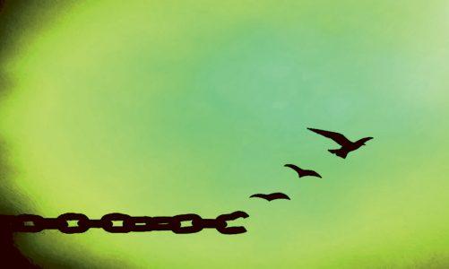 Може ли прошката да променя историята?